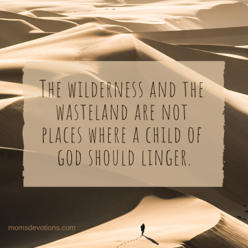 wilderness and wasteland