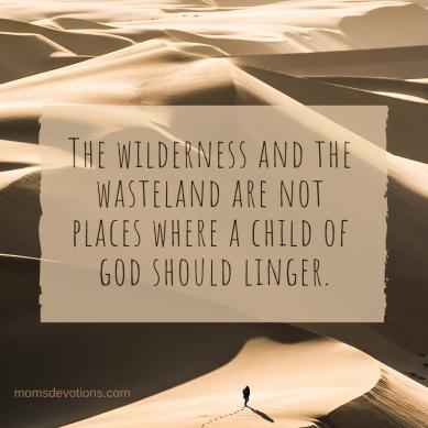 wilderness and wasteland